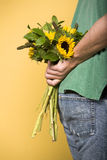 Man holding Sunflowers Stock Images