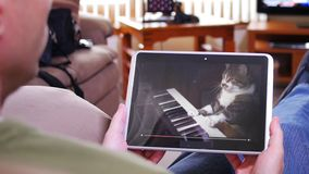 Man Watches Funny Keyboard Playing Cat on Tablet PC. A man holding a tablet PC watches a viral video of a funny cat playing a keyboard or electric organ stock video footage