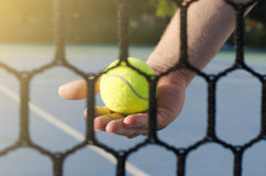 Man holding tennis ball behind the net, closeup Royalty Free Stock Photography