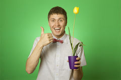 Man holding a tulip grown in a pot Royalty Free Stock Image