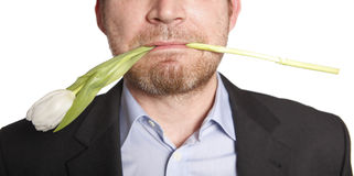 Man holding tulip in his mouth Stock Photography