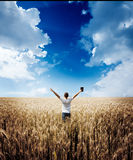 Man holding up Bible in a wheat field Stock Photography