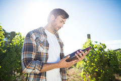 Man holding wine bottle at vineyard Stock Photography