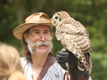 Man holds barred owl during falconry demonstration Stock Images