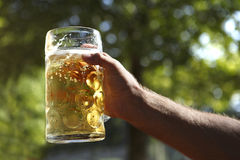 Man holds beer in hand Stock Image