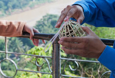 Man Holds Bird Cage. Luang Prabang. Laos. Stock Photos