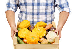 Man holds a box with vegetables Stock Image