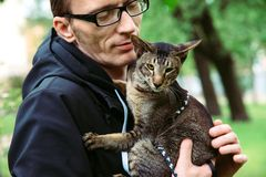 Man holds the cat Royalty Free Stock Photo