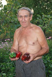 A man holds in his hands the Bulgarian pepper grown in the garden. A man holds in his hands red and green peppers grown in the garden area Stock Photos
