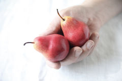 Man holds red Forelle pears Stock Photo