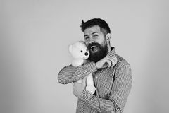 Man holds teddy bear on blue background. Guy with happy smiling face plays with white soft toy. Man holds teddy bear on blue background. Man with beard cuddles royalty free stock images