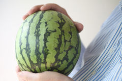 Man holds a watermelon Stock Images