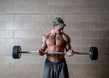 Man lifting weights. Man in gym lifting free weights or bodybuilding Royalty Free Stock Image