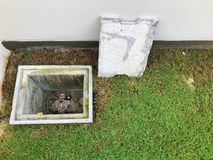A man hole water and a hole of grease trap with the drain system around the house. royalty free stock photos