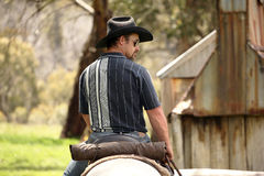 Man and horse. Horse riding in the green outback Stock Images