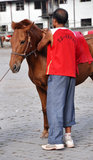 Man and Horse Royalty Free Stock Photos