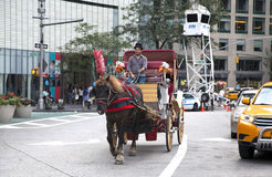 Man on horse carriage in Manhattan Stock Photos