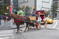 Man on horse carriage in Manhattan Royalty Free Stock Image