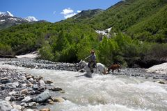 Man on a horse crossing a river in Georgia. Man on a horse crossing a river in Caucasus mountains in Svaneti, Georgia stock image
