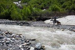 Man on a horse crossing a river in Georgia. Man on a horse crossing a river in Caucasus mountains in Svaneti, Georgia stock photo