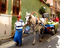 Man with horse drawn watermelon cart Istanbul, Turkey Stock Images