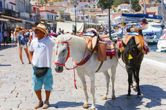 Man with horse - Greece islands Royalty Free Stock Images