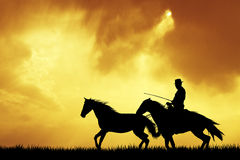 Man on horse Stock Image