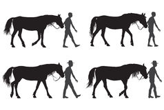 A man with a horse. Man leading a horse for a walk Royalty Free Stock Image