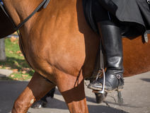 Man on a horse. Mud boot. Royalty Free Stock Photography