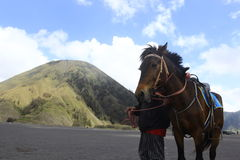 Man and Horse. A man rentaling a hores at Bromo's Mountain Area Royalty Free Stock Photo