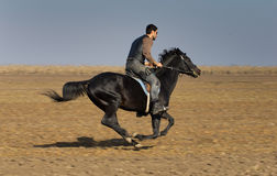 Man on horse Royalty Free Stock Photography
