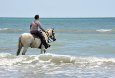 Man and horse in sea. Riding man and his white horse in the sea Stock Images