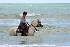 Man and horse in sea Stock Images