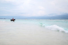 Man on horse on sea shore Royalty Free Stock Image