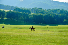 The man and horse on the summer meadow. The photo was taken in huamugou national forest park Hexigten banner Chifeng city Nei Monggol Autonomous Region,China Stock Photo