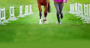 Man and horse together royalty free stock photo