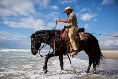 Man with horse wading in water Royalty Free Stock Photos