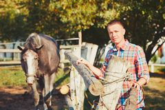 Man with horse. Young man and horse in countryside farm in summer day Stock Images