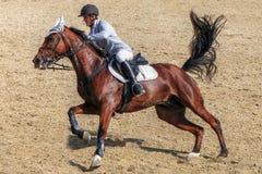 Man horseback riding on galloping brown horse. Male jockey with horseback riding equipment, riding on galloping purebreed race horse Stock Photos