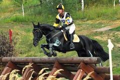 Man horsebak on jumping black chestnut horse