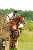 Man horsebak on jumping red chestnut horse. Triathlon in Russia Stock Photography