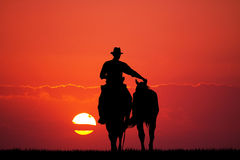Man and horses Royalty Free Stock Photography