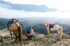 Man with horses for tourist rent at Mount Bromo Stock Photo