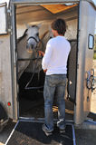 Man, horses and trailer Royalty Free Stock Photo