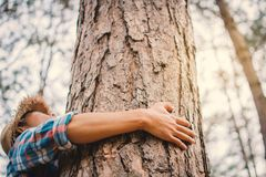 Man hug big tree color of hipster tone selective soft focus. Concept nature and people protect environment Royalty Free Stock Image