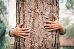 Man hug big tree color of hipster tone selective soft focus. Concept nature and people protect environment Royalty Free Stock Photos