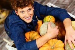 Man hugging pumpkins Royalty Free Stock Photography