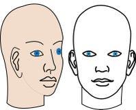 Man human vector face shape vector illustrations clipping masks Royalty Free Stock Photo
