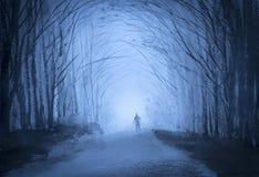 Man i en skog på skymning arkivbild