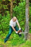 Man i ett skogsawingträ med en chainsaw Arkivfoto